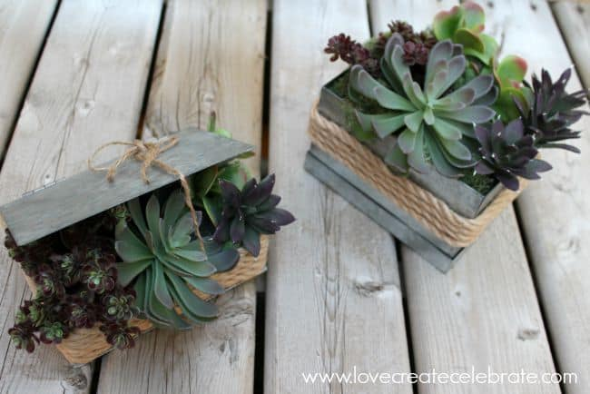 Rustic Succulent Planters - Florist bucket transformation - a great way to bring the outdoors inside this spring!