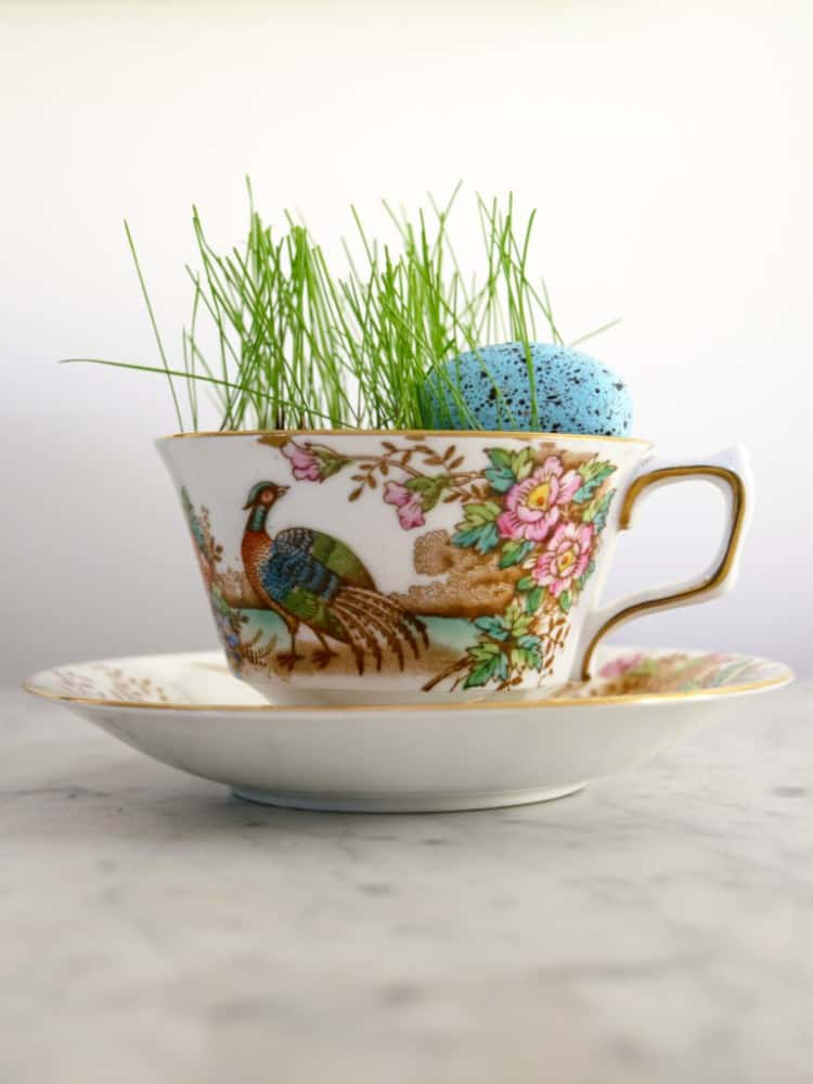 Mini Teacup Planters - Florist bucket transformation - a great way to bring the outdoors inside this spring!